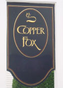 copper_fox